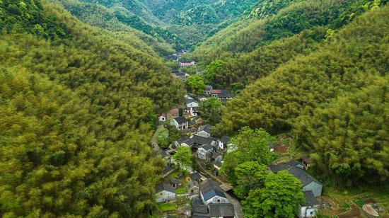 圖為俯瞰合心村。項菁攝