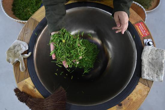 圖為:一位炒茶選手在炒制新采摘的龍井茶。  王剛 攝
