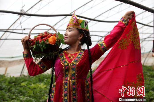新疆和静县草莓节开幕 游客喜摘草莓带热乡村游