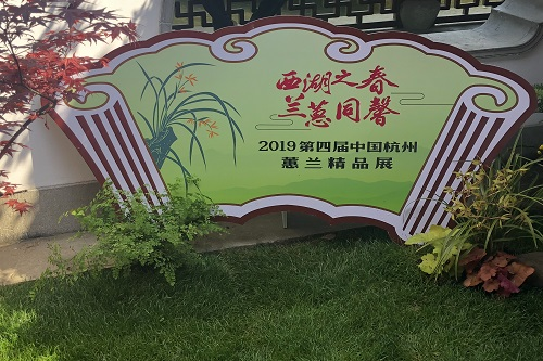 2019第四屆中國杭州蕙蘭精品展開幕式。汪志佳 攝