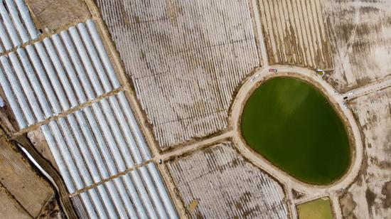 航拍新疆巴州尉犁縣墩闊坦鄉霍爾加村田園觀光綜合體。李飛 攝
