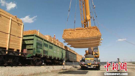 工人操作装载机卸载进口木材。 李明 摄