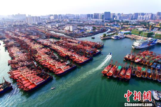 南海休漁期 廣西北海數千艘漁船泊于港內