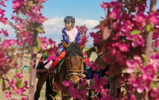 2019新疆博乐市首届文化旅游节盛大开幕