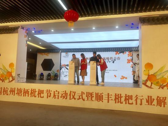 第二十一届中国杭州塘栖枇杷节正式开幕。 刘方齐 摄