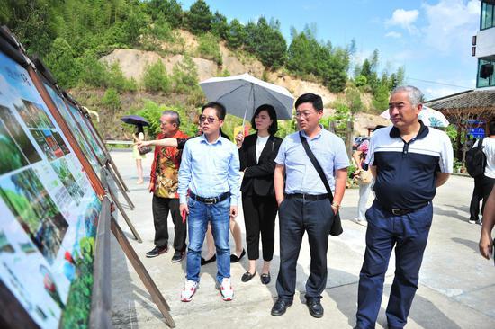 图为:华文媒体记者走进景宁东坑。  张茵 摄