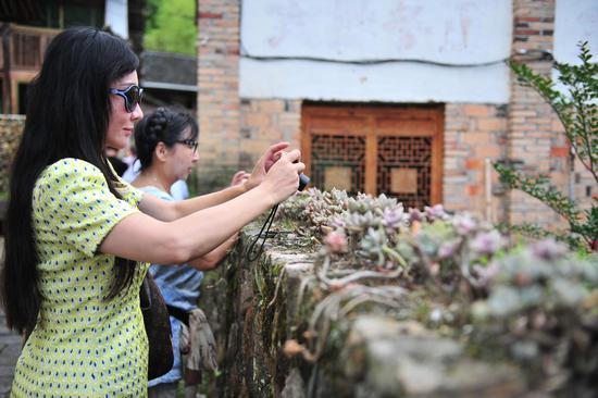 图为:两名华文媒体记者在拍摄多肉植物。  张茵 摄