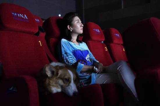 《一条狗的使命2》催泪回归 萌宠贝利再演暖
