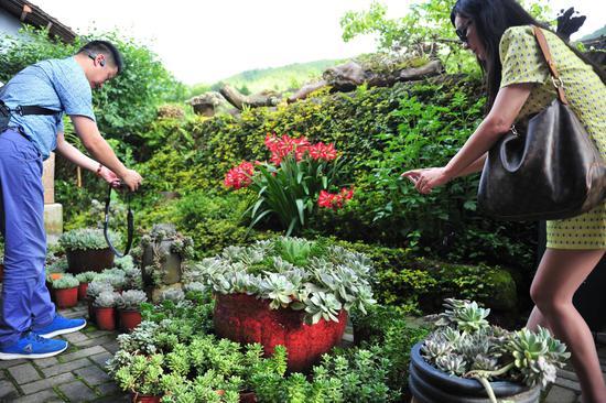 图为:多种多样的植物吸引华文媒体记者的拍摄。  张茵 摄