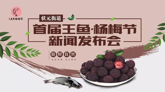 日前,龙湾区召开状元街道2019年首届王鱼杨梅节新闻发布会。龙湾宣传部供图