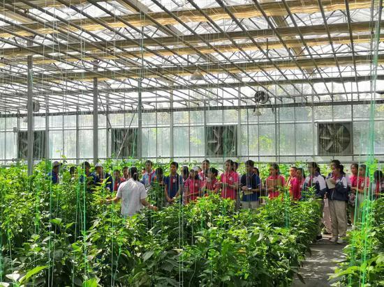 """600余名孩子在新疆农业博览园过""""六一"""""""