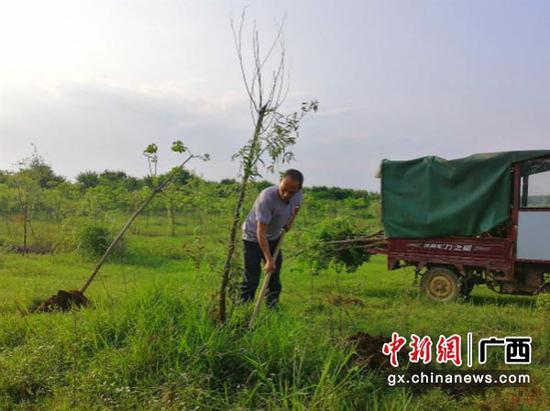 图为李某在富川龟石国家湿地公园补种树苗。法院供图