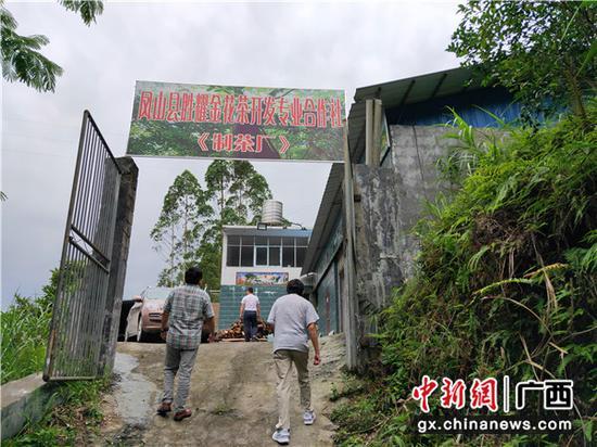 圖為合作社制茶廠。