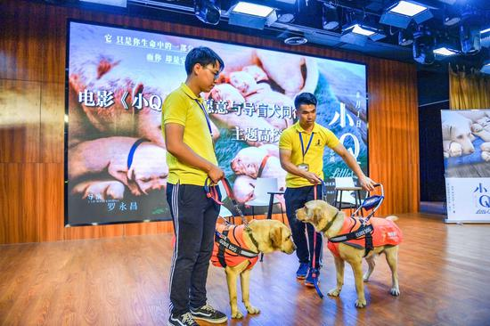 图为:驯养师与导盲犬。 李晨韵 摄