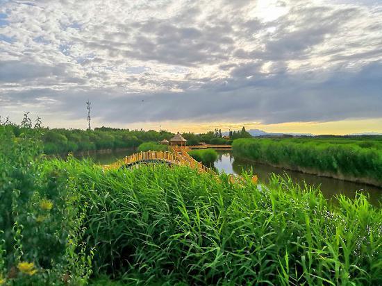 雨后博斯騰湖別樣美