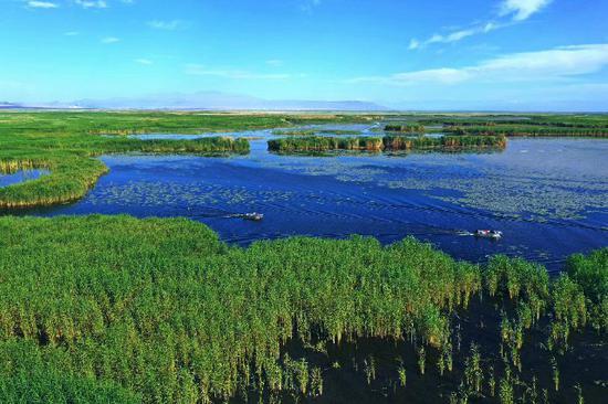 博湖县:夏游博斯腾湖 尽享湿地风光
