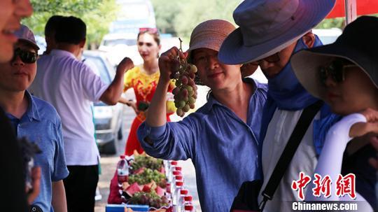 新疆鄯善縣邀海內外客商開啟鮮食葡萄甜蜜之旅