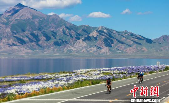 資料圖:賽里木湖畔鮮花盛開?!∮谔K甫·艾尼 攝