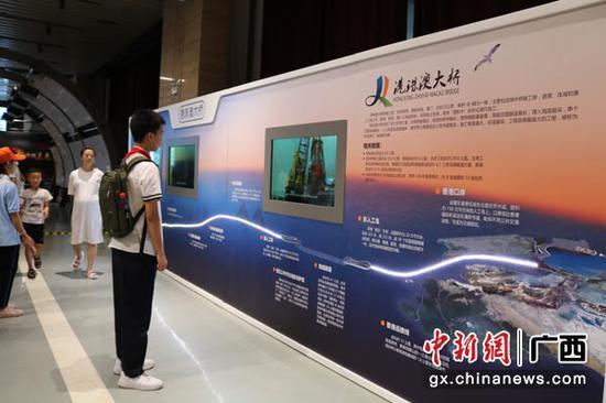 图为学生观看港珠澳大桥建设技术介绍展板。陈秋霞 摄
