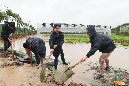 众人冒雨排水降低损失。王正摄