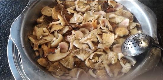 曾先生下厨将野生蘑菇简单处理后煮了汤和好兄弟一起分享。医院提供