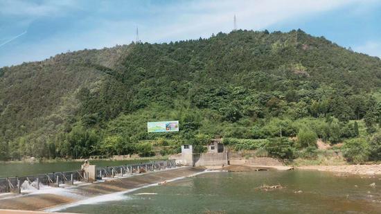 浙江绿水青山。  钱晨菲 摄