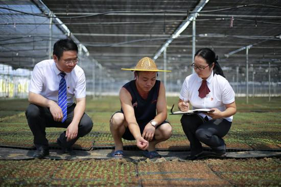 浙江路桥打造中国小微金融服务之都。路桥区金融办提供