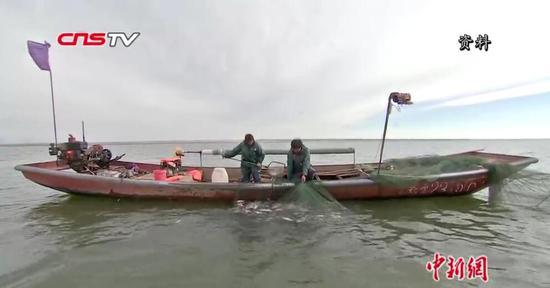 """阿勒泰15年""""禁渔令"""" 放鱼苗延长禁渔期 土著鱼资源得到保护"""