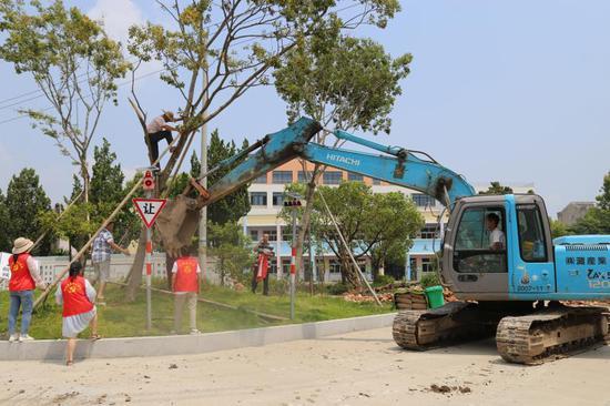 图为:13日,浙江省温岭市城南镇志愿者扶正倒伏的树木 金云国 摄