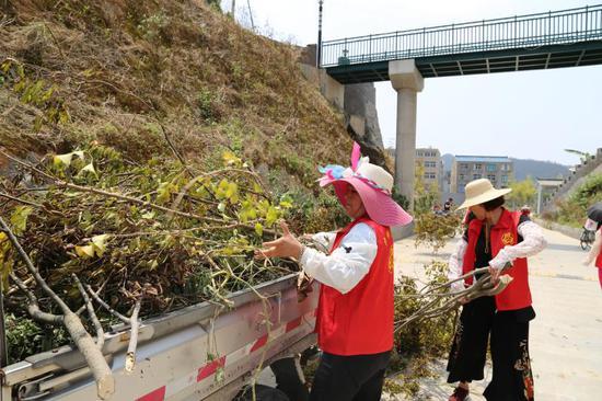 图为:13日,浙江省温岭市城南镇志愿者清理路面垃圾和树枝 金云国 摄