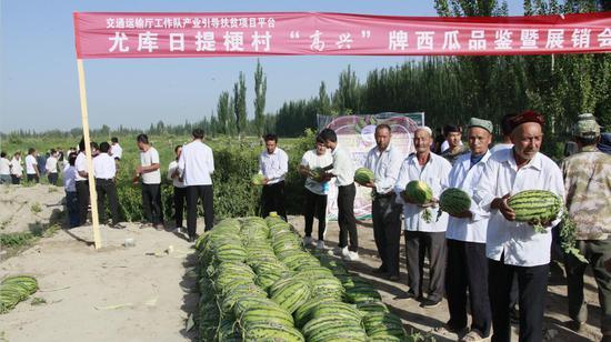 """7月12日,高尚农业科技产业发展有限公司生产的""""高兴""""牌无公害西瓜品鉴和展销会上,当日卖出西瓜32吨。秋季大白菜已经预定出了200吨,将远销乌鲁木齐、叶城、西藏阿里地区。"""