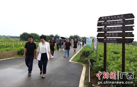 图为参加活动的画家走访中华茉莉园。