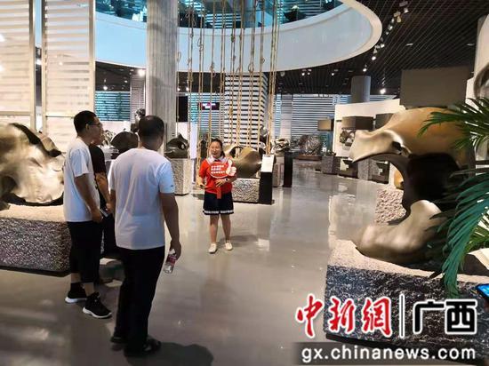"""广西柳州小学生争当讲解员 为奇石文化""""代言"""""""