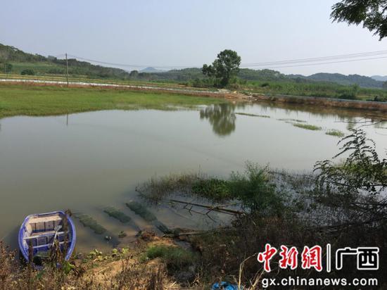 柳州市悦鑫水产养殖专业合作社小龙虾繁殖基地。