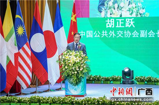 中国公共外交协会副会长 胡正跃