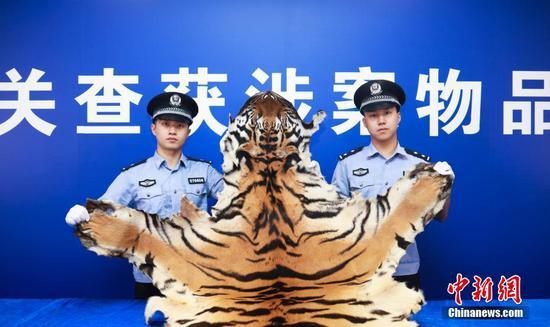 拱北、南宁海关联合破获走私濒危动物及其制品进境案