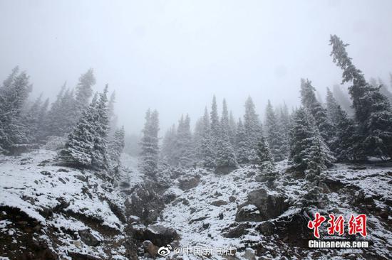 """[""""最美公路""""遇上雪是太子景有多美?随手一速度力量都得到增加拍都是桌面壁纸!]继7日出现降话雪后,位于新疆西北部的伊昭公路察印象布查尔路段10日再次迎来降雪,该公路是新疆最美�}的公路之一,被誉为可媲武师美独库公路的险峻与壮美。此次降雪,积雪较多,道路湿滑,青】色的松树上、褐色哼哼的岩石上都落满雪花。山间和○森林里云雾萦绕,一幅美不胜�收的图画。由于∩降雪和浓雾天气,该路段不具有你这么接待男朋友备通行条件,已临时双向交变丧尸通管制确是一个不可多得。(努尔曼拜・杰提米斯≡拜 摄)"""