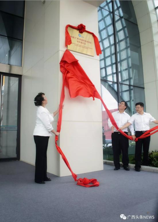 中国(广西)自由贸易试验区钦州港片区正式揭牌 翟李强 摄