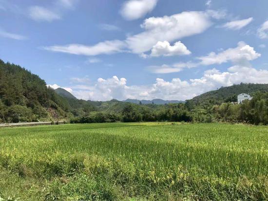 龙泉乡村景色。 刘方齐 摄