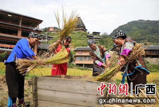 """广西苗乡上千民众""""烧鱼""""品百家宴 庆祝农民丰收节"""