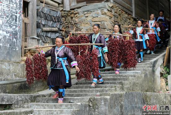 苗族婦女挑著辣椒去參賽。石峰 攝