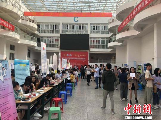sunbet举办侨商企业招聘会 助企业打开招才门