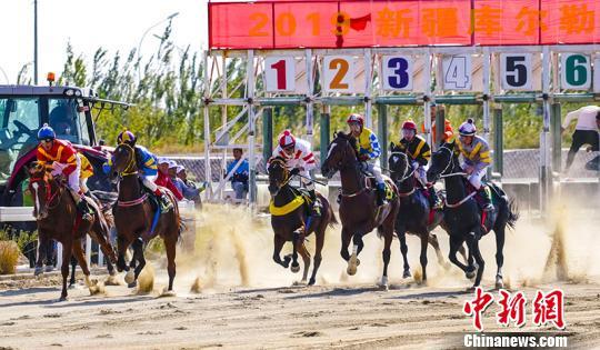2019新疆库尔勒香梨节·速度赛马系列赛火热开赛