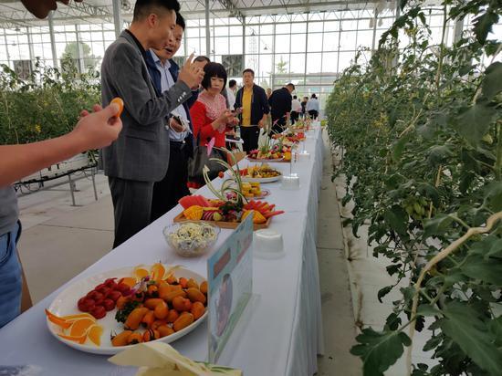游客参观5G智慧农场。供图