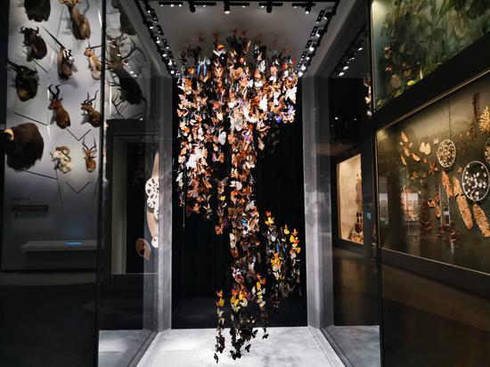 安吉館自然藝術展廳。施紫楠 攝