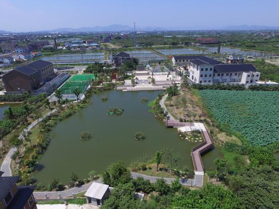 雷甸镇杨墩村美丽乡村建设  雷甸镇提供