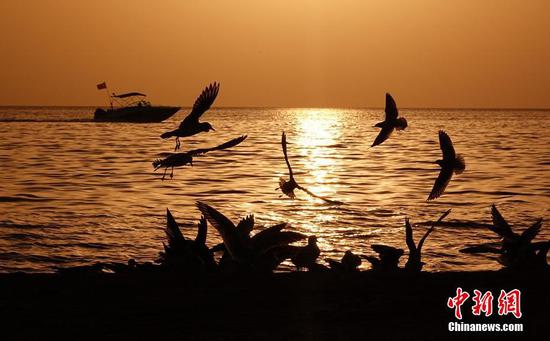 新疆金沙滩景区现海上落日美景 波光粼粼候鸟嬉戏