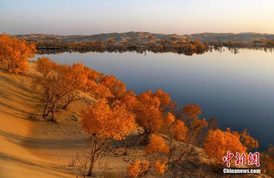 新疆尉犁縣葫蘆島深秋景色美不勝收