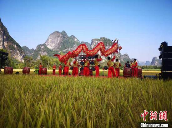11月8日,廣西大新明仕田園景區舉行首屆金秋豐收節。供圖