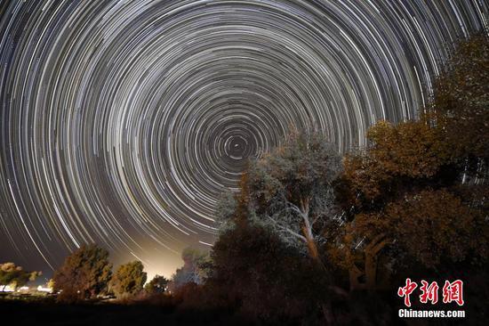 星光下的新疆塔里木盆地若羌胡楊林